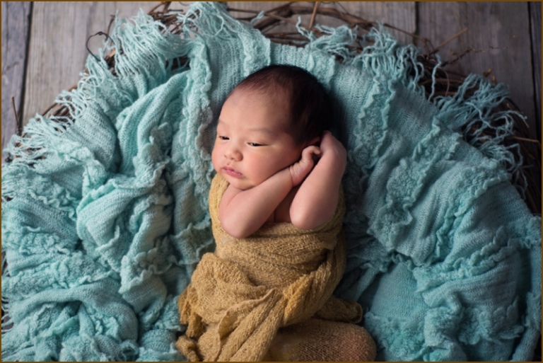 newborn photographers professional