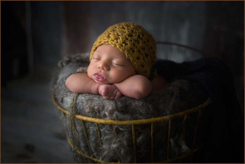 beverly hall baby photography