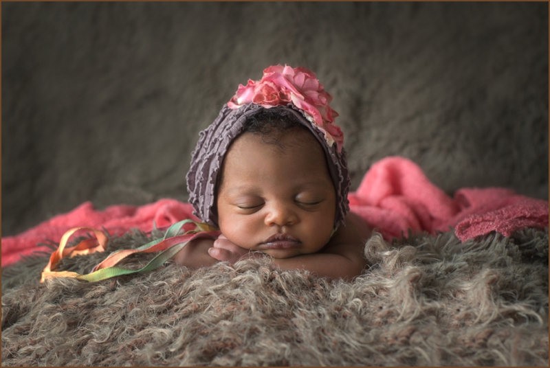 beverly hall newborn photography